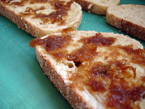 caramelized-onions-on-bread